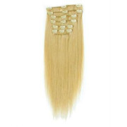 Synthétique extension Clip On - (60cm) - #613 Blond