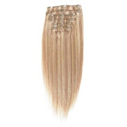 Clip on Extension (65 cm)  #18/613 Blond Mix