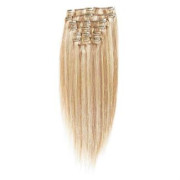 Clip on Extension (40 cm) #27/613 Blond clair Mix