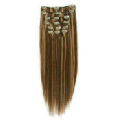 Clip on hair 40 cm #4/27